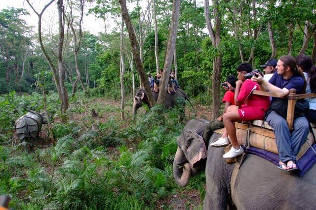 Apex Nepal Jungle Safari In Royal Chitwan National Park